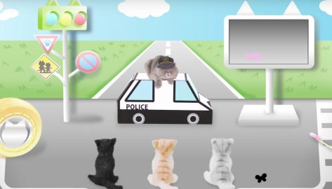 Japanese safety video teaches cats the rules of the road